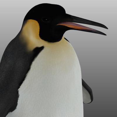 maya emperor penguin