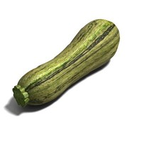 3d dxf courgette modelled