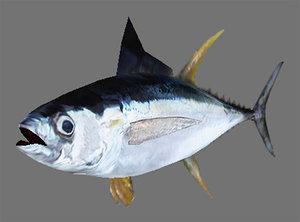 3d model of fish games