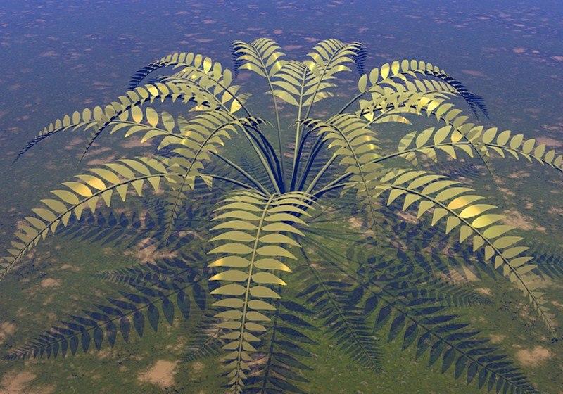 fern plant 3d model