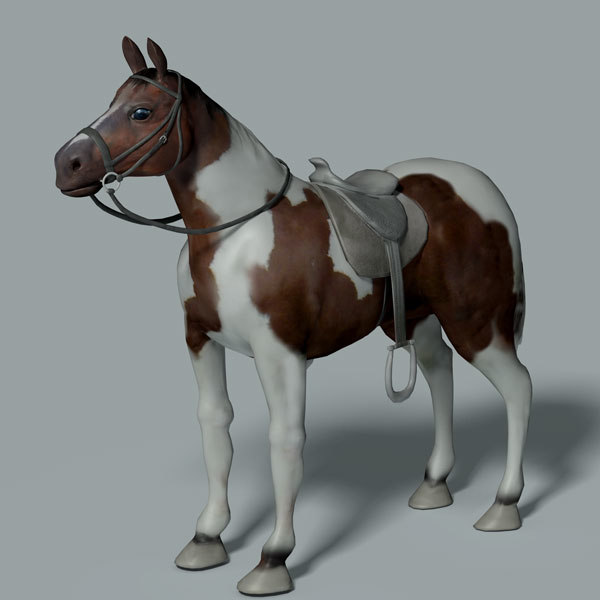 pinto horse saddle 3d max