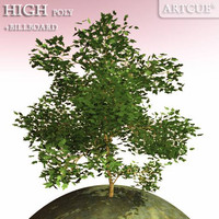 tree high-poly leaves 3d 3ds