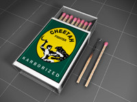 Matchbox with sticks and Burnt