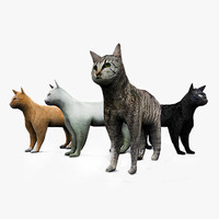 cat 4 fur max