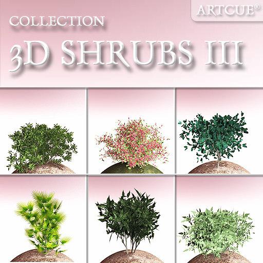 shrub bush 3d model