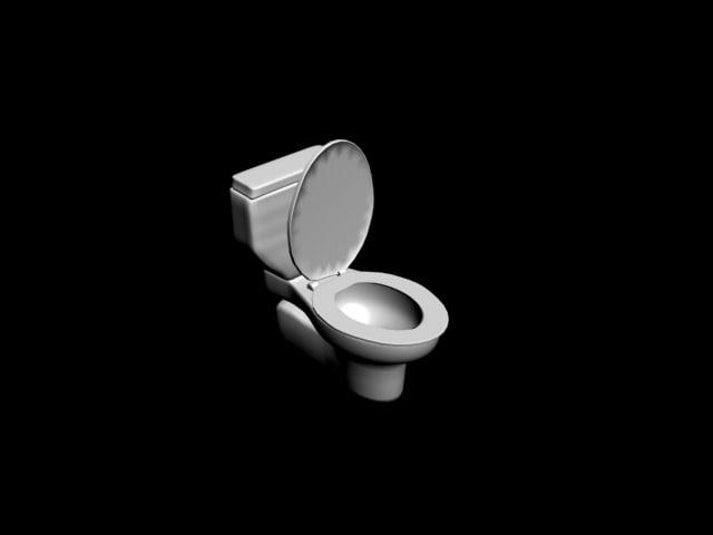 toilet 3ds