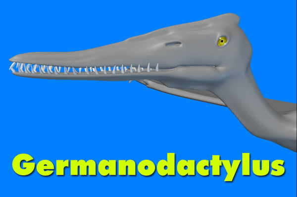 germanodactylus dinosaur 3d model