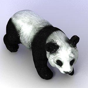 max giant panda