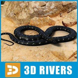 3d black python snakes
