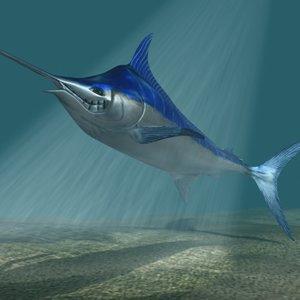 3d 3ds blue marlin toon