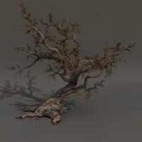 tree scary 3d model