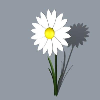 3d flower model