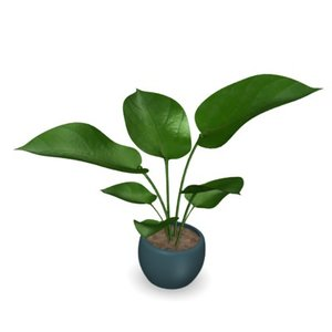 philodendron 3d 3ds