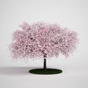 CGAXIS tree 12