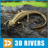 smooth newt lizards 3d model