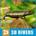 newt 3D models