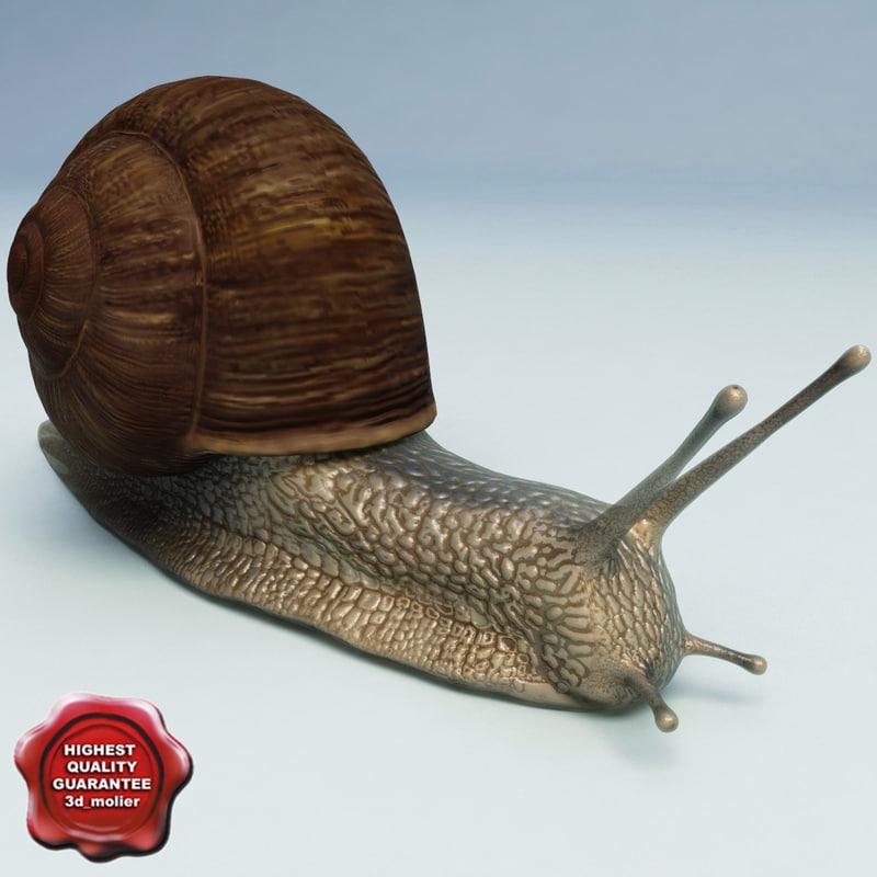 snail modelled 3d 3ds