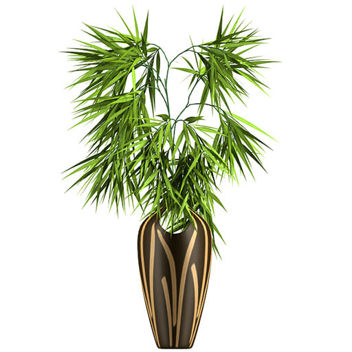 bamboo plant 3d model