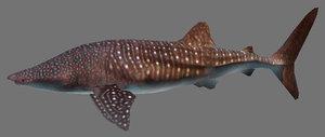 3d model shark games