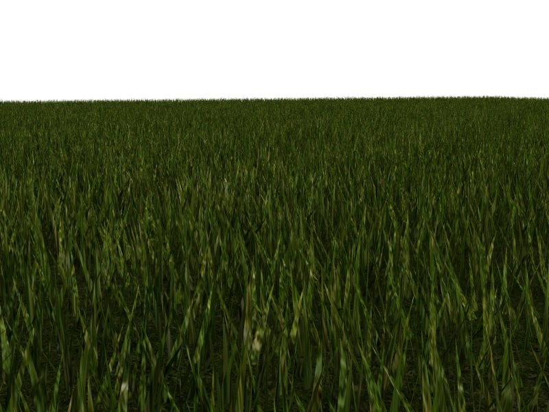 polygonal grass blades 3d model