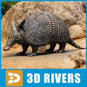 armadillo animals mammals 3d model