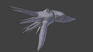 cuttlefish base mesh 3d model