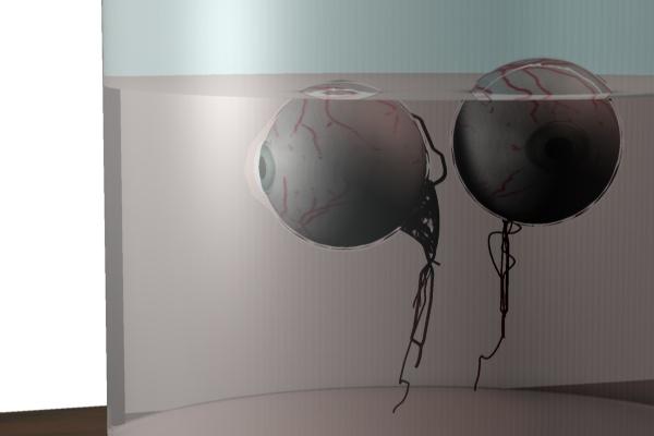 eye horor 3d model