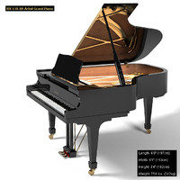 Kawai Rx5 Artist Concert grand piano black
