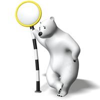polarbear_a04