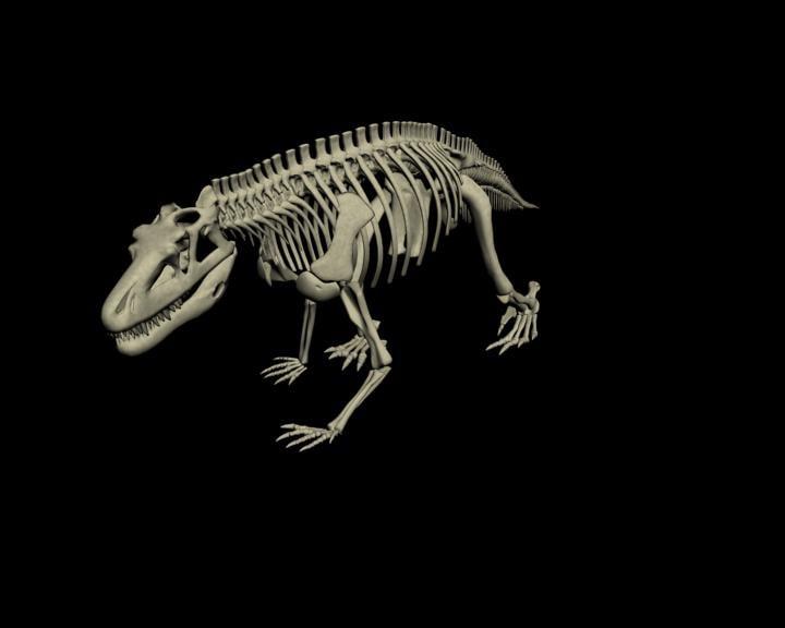 archosaur saurosuchus galilei dinosaur 3d model