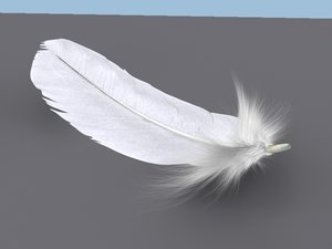 feather plume 3d model