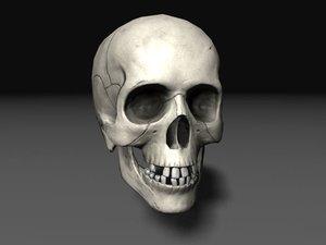 nextgen skull 3d model