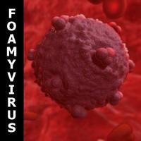 human foamy virus 3d model