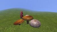 mushroom shroom 3d model