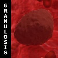 virus granulosis 3d model