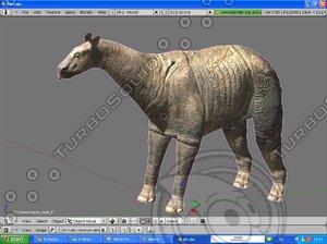 indricotherium 3d model