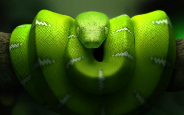snake 3d max
