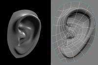 obj human ear
