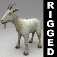 3d model rigged goat