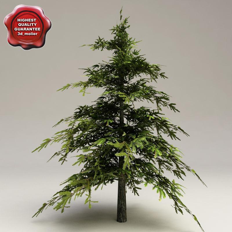 low-poly fir tree 3d model