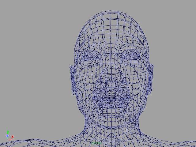 anatomically correct female 3d model