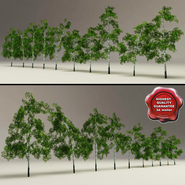 3d model low-poly birch trees v2