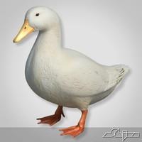 duck white 3d model