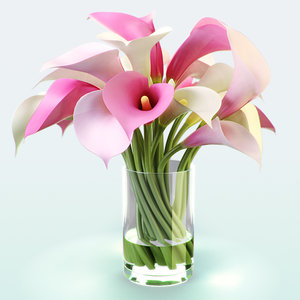 realistic flowers color calla lily 3d max