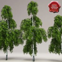 Low-Poly Birch Trees Collection