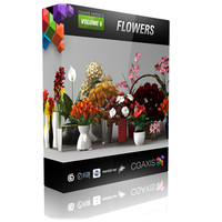 CGAxis models volume 6 FLOWERS