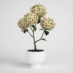 plant 3d obj
