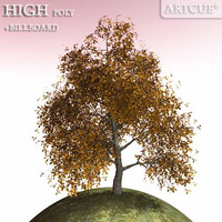 3d model autumn tree