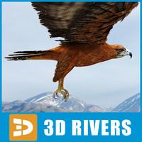 3d 3ds bonelli s eagle
