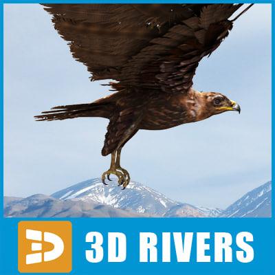 maya indian spotted eagle